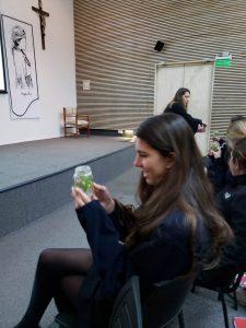 Charla C3: ¿Puede crecer un árbol en un vaso de vidrio?