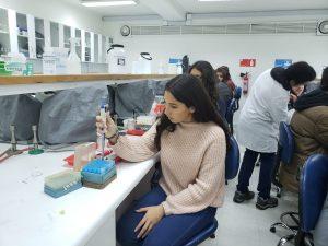 Explora Detectives Moleculares