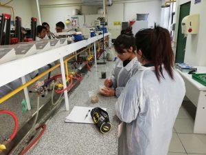 Explora Futuros Químicos